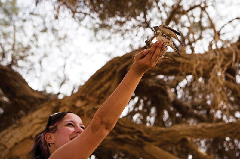 몰리와-소셜한-새들
